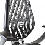 LifeSpan R3i Recumbent Bike Review,LifeSpan R3i Breathable Seat Back